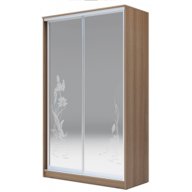 Шкаф-купе 2-х дверный 2200х1682х420 два зеркала, рисунок