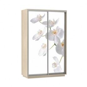 Шкаф-купе Дуо 1200x600x2200, фотопечать Белая Орхидея, шимо светлый