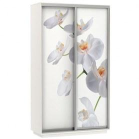 Шкаф-купе Дуо 1400x600x2400, фотопечать Белая Орхидея, белый снег