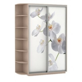 Шкаф-купе Хит, 1500x600x2200, фотопечать, со стеллажом, белая орхидея, дуб молочный
