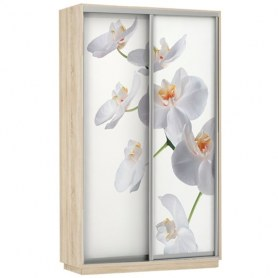 Шкаф-купе Дуо 1600x600x2200, фотопечать Белая Орхидея, дуб сонома