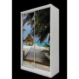 Шкаф-купе 2-х дверный 2200х1500х620 фотопечать, рисунок